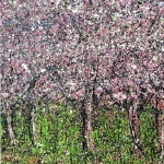 Cherry Blossoms *Sold